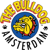 THE BULLOG - Amsterdam